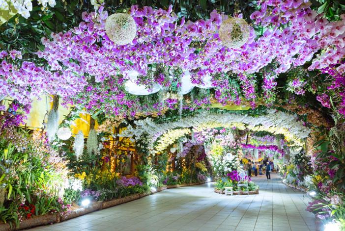 高陽国際花博覧会