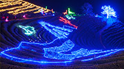 Festivals en hiver