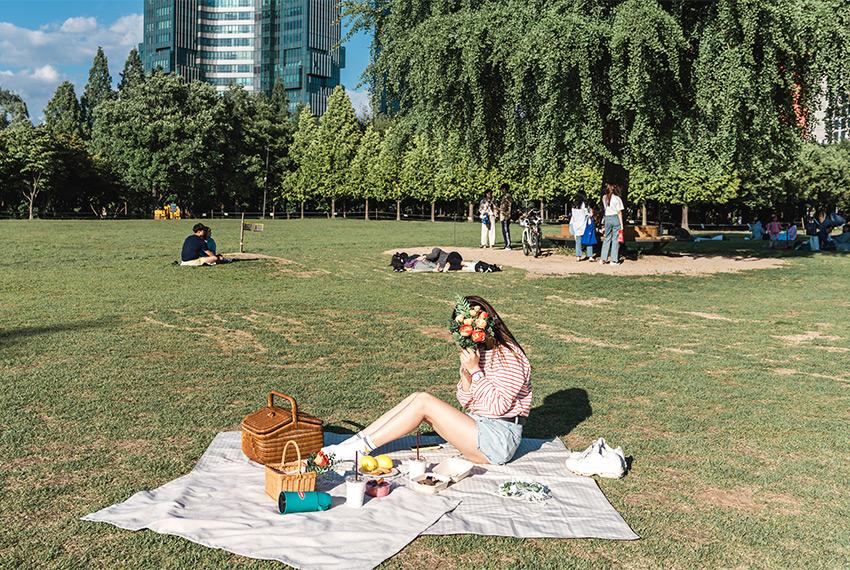 Wiese im Seouler Wald