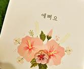 La bella escritura coreana hangeul