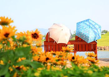 順天湾国家庭園