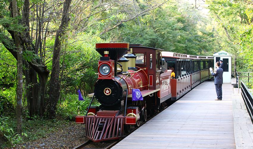Tren del Parque Temático Eco Land (arriba)