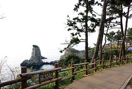 Sendero Olle-gil Nro. 7 de Jeju (abajo).