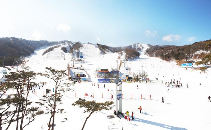 Phoenix Pyeongchang Snow Park