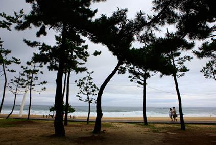 Пейзажи в окрестностях беседки Кёнпходэ