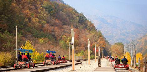 与大自然一起快乐郊游吧!铁路自行车!