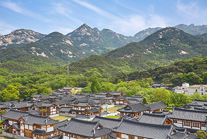 Дендрарий Пёкчхочжи (Источник: Gyeonggi Tourism Organization)