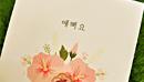 Хангыль – прекрасный корейский алфавит