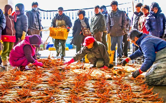 蔚珍竹蟹與紅蟹節