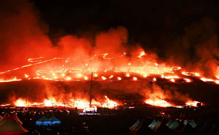 濟州野火節