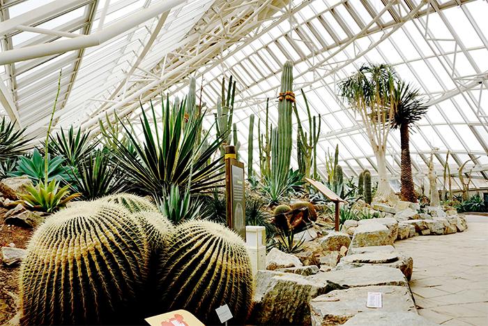 国立生態園エコリウム(写真提供:国立生態園)
