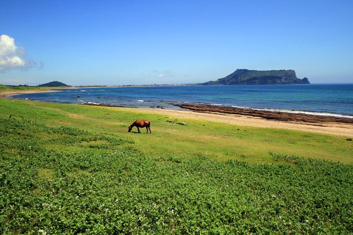 済州の美しい海