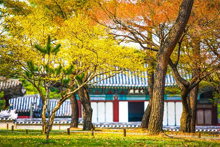 Palast Changgyeonggung