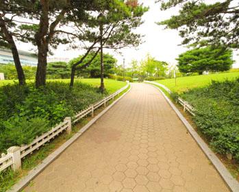 汝矣岛公园