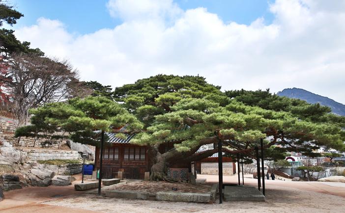 ソウル美術館&石坡亭の風景