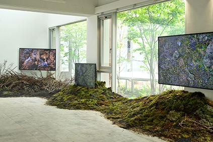 """Ausstellung """"GARDENING"""" (Quelle: Piknic)"""