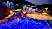 Les festivals des lumières
