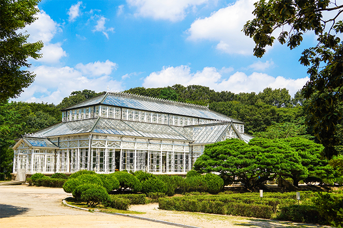 Changgyeonggung Palace's greenhouse