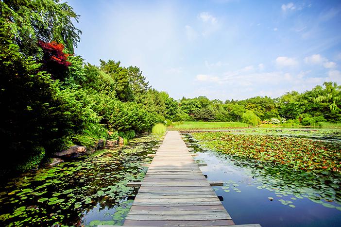 Jardín Botánico Byeokchoji.