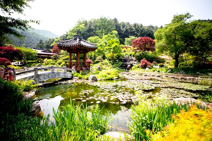 Teich Seohwayeon im Arboretum Achim Goyo