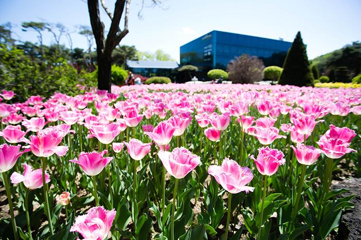 Botanischer Garten Byeokchoji