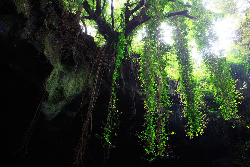 Пещера Манчжангуль