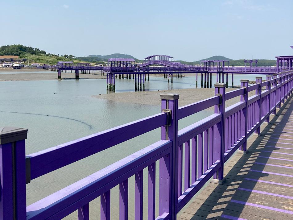朴只島から斗里へと続くパープル橋