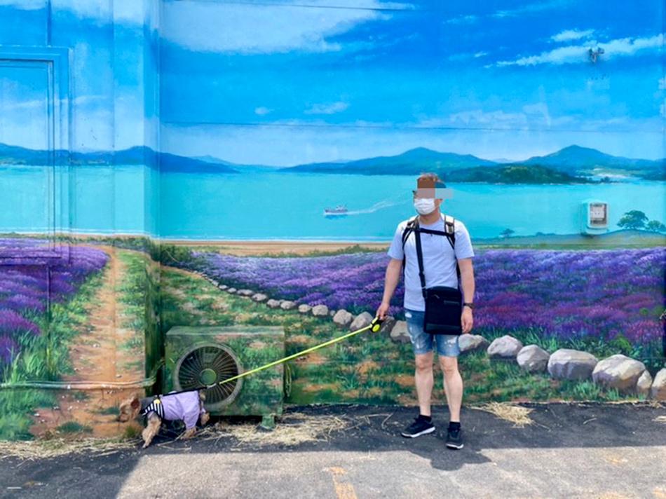 ラベンダー畑の壁画
