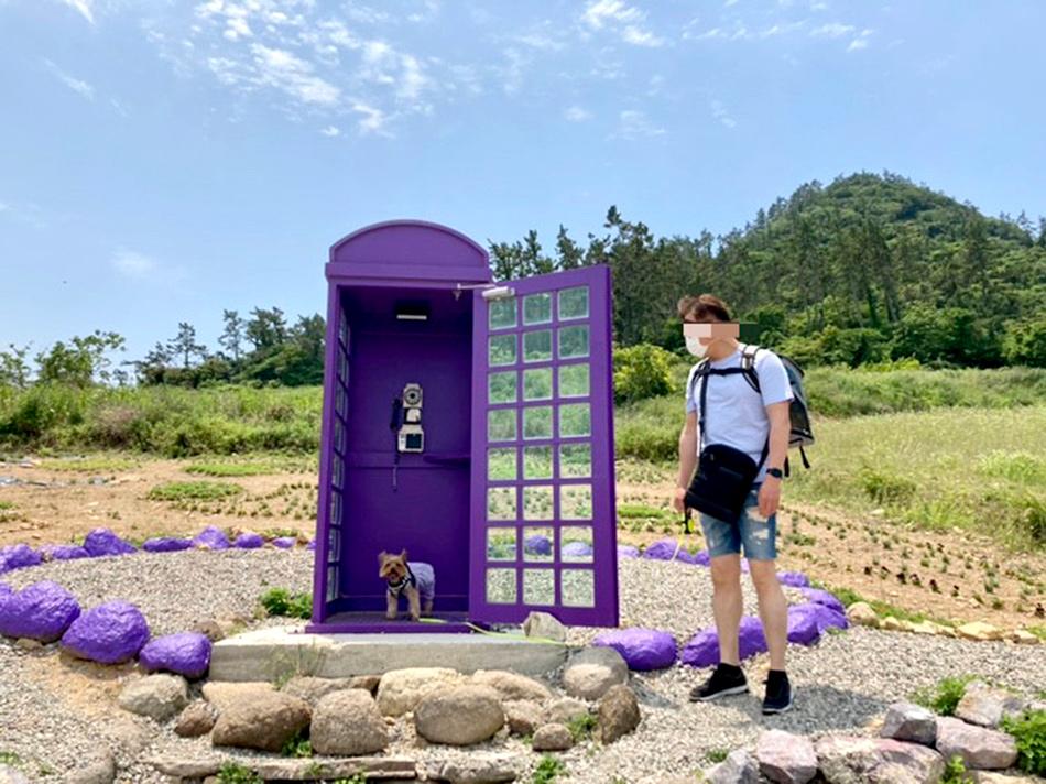 紫色の電話ボックス