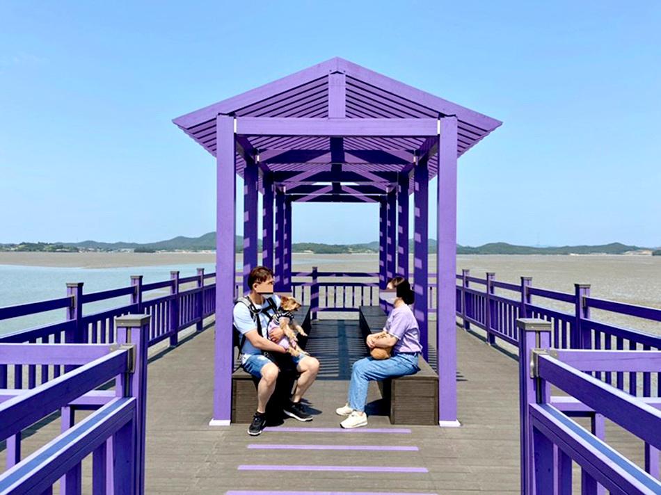 パープル島桟橋