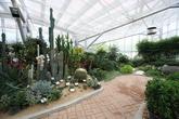Bomulseom Botanic Garden