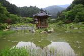 The Garden of ..