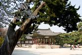 Haminjeong of Changgyeonggung Palace