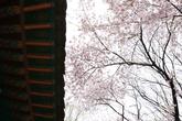 Eunjeoksa Temple
