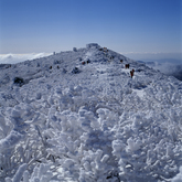 Winter of Mt.Taebaeksan