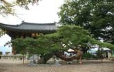 Danhosa Temple