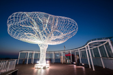 Tree of Life Observatory