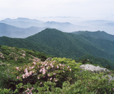 Mt. Deokyusan 