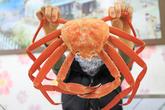 Daegejjim (Steamed King Crab)