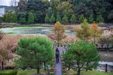 Daecheong Lake Natural Waterside Park