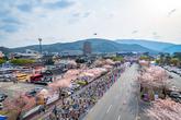 Gyeongju Cherry Marathon