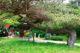 Eunjeoksa Temple in Yaesu
