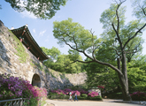 Namhansanseong Fortress in Spring 