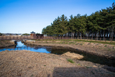 평해사구습지 생태공원