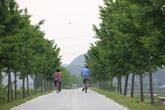 백곡천 산책길