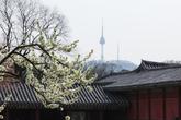 Changgyeonggun..