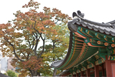 Dancheong of Changdeokgung Palace
