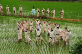 Song of Rice planting