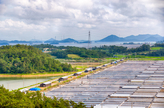 Taepyeong Salt Farm