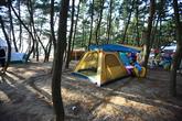 몽산포오토캠핑장